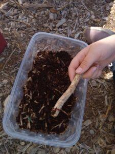earthworm farm